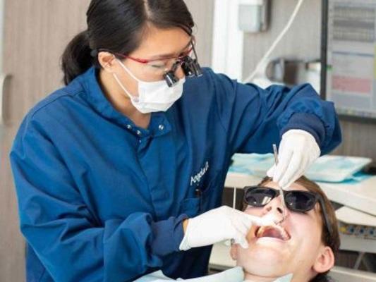 The 10 Best Teeth Whitening Kits of 2021 in Houston, TX