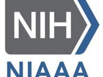 Alcoholism makes social relationships less rewarding: NIAAA grant study