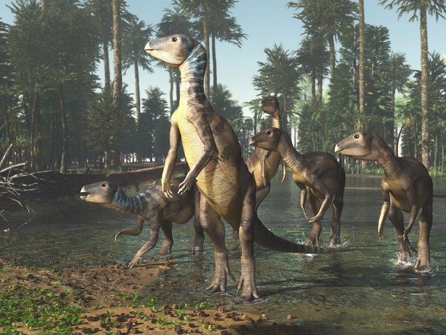 Opal-Filled Fossils Reveal Timid, Dog-Size Dinosaur That Lived Down Under