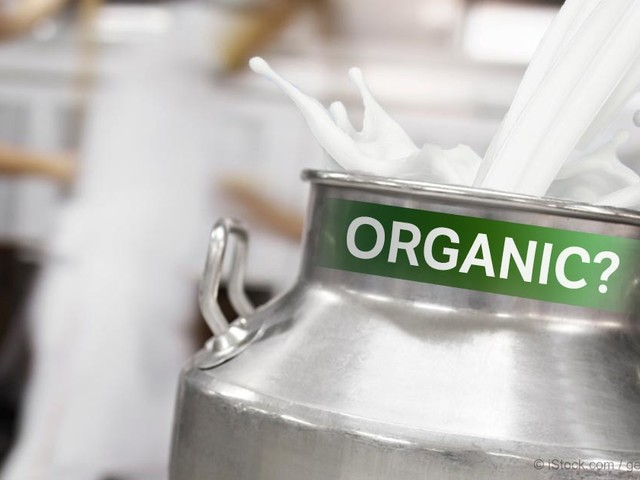 How Organic Is Your Organic Milk?