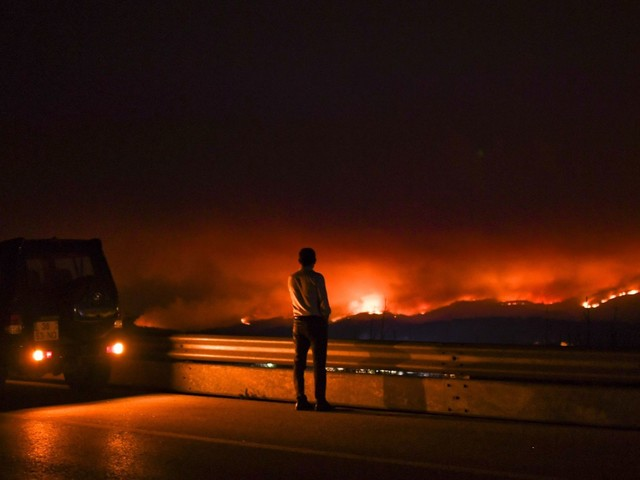 Portugal Forest Fires: At Least 60 Dead, Firefighters Struggle To Put Out Blaze