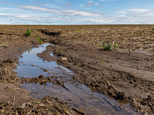 Trump's New 'Navigable Waters' Rule Is an Improvement, but Still Murky