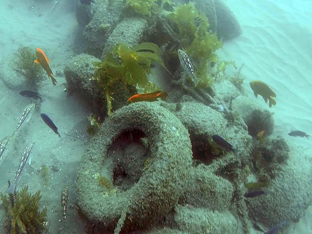 Divers begin removing 30-year-old junk reef off Newport Beach coast