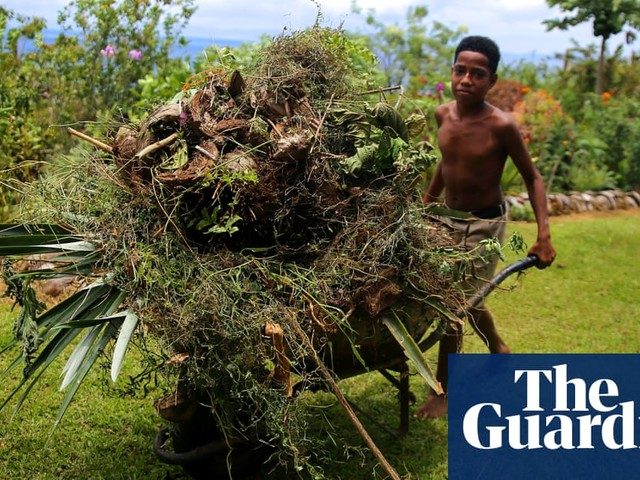 A farm to withstand a cyclone: rebuilding after Fiji's worst storm