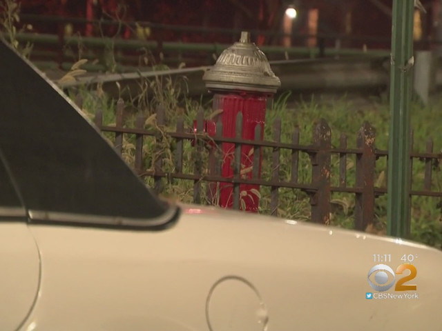 Windsor Terrace, Brooklyn Neighbors Say Hidden Fire Hydrant Makes For Ticket Trap