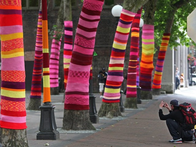 Explore Alaska's fjords and yarn-bomb your bedroom: 5 fun projects for kids this week