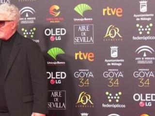 Almodovar wins big in Spain