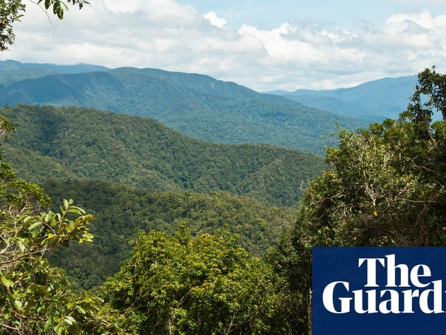 New Guinea has greatest plant diversity of any island in the world, study reveals