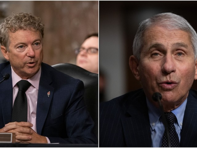 Fauci finally loses his patience with Rand Paul
