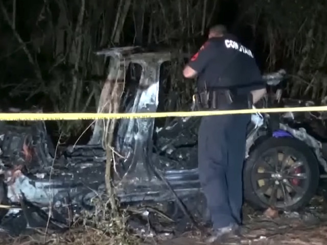 Two dead after driverless Tesla slammed into tree and burst into flames, police say