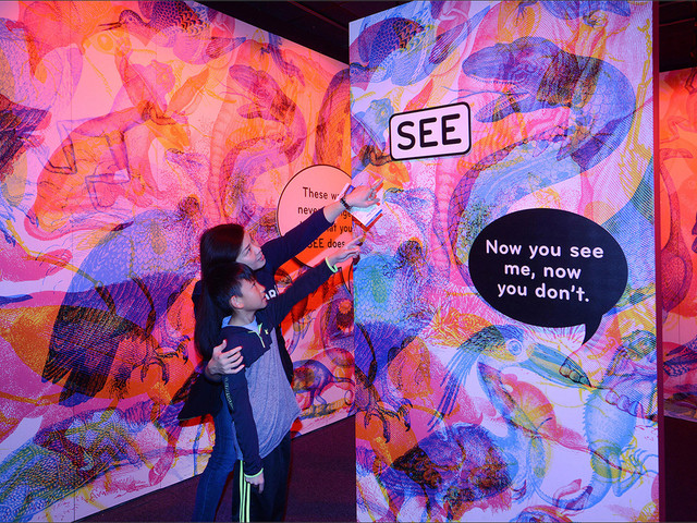 See, Smell, Touch: Why Your Kids Will Love New Senses Exhibit