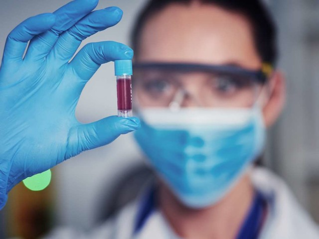 Medical News Today: Stem cell discovery could improve treatments for leukemia, other diseases