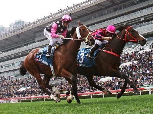 Enforceable, Liam's Lucky Charm enter Kentucky Derby picture