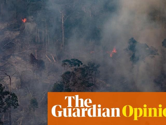 Fires are devouring the Amazon. And Jair Bolsonaro is to blame | David Miranda