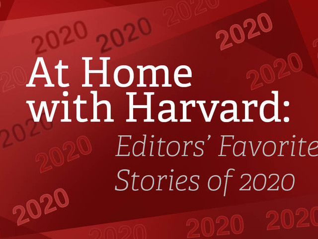 At Home With Harvard: Editors' Favorite Stories of 2020