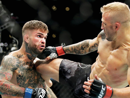 Disney Plans UFC Broadcast for FX
