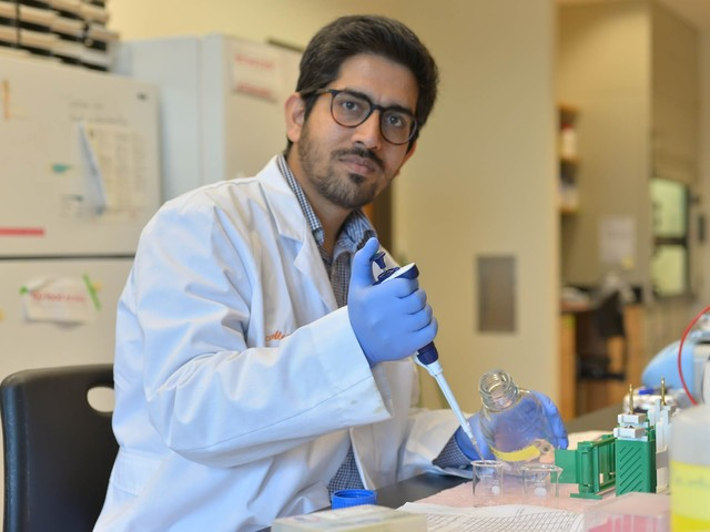 College of Science postdoc fellow earns Distinguished Postdoctoral Award