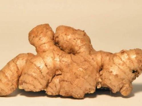 Ginger Wonderland: 7 Zingy Benefits of Ginger Tea