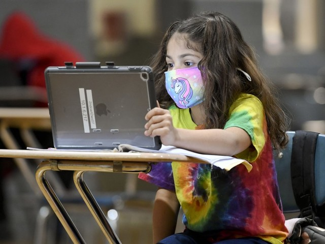 All children should wear masks in school this fall, even if vaccinated, pediatrics group says