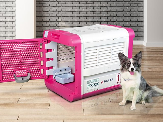Delta has a new decked-out pad your furry friend can travel in. Cost? $850