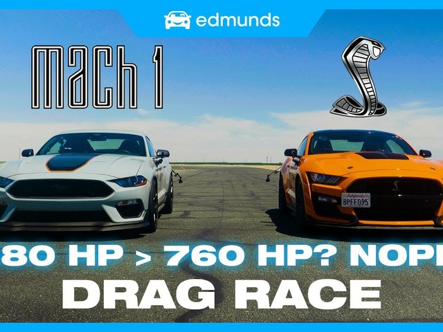Mustang Mach 1 VS Shelby GT500 Drag Race Explores The Difference 280 Ponies Make