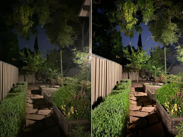 Everything You Need to Know About Night Mode in the iPhone 11 and 11 Pro