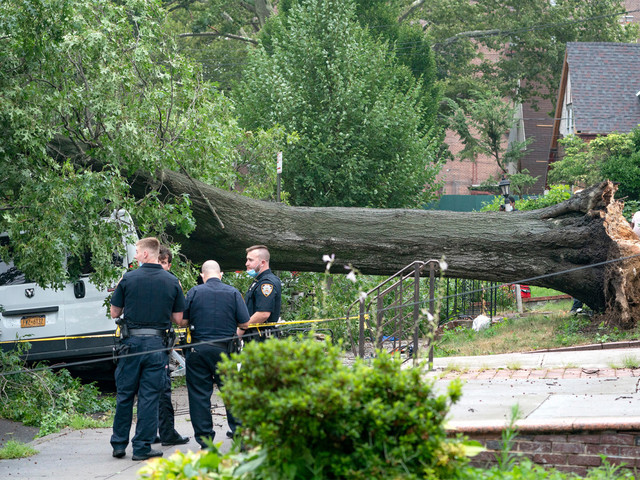 Man killed, woman injured by falling trees in NYC amid Tropical Storm Isaias