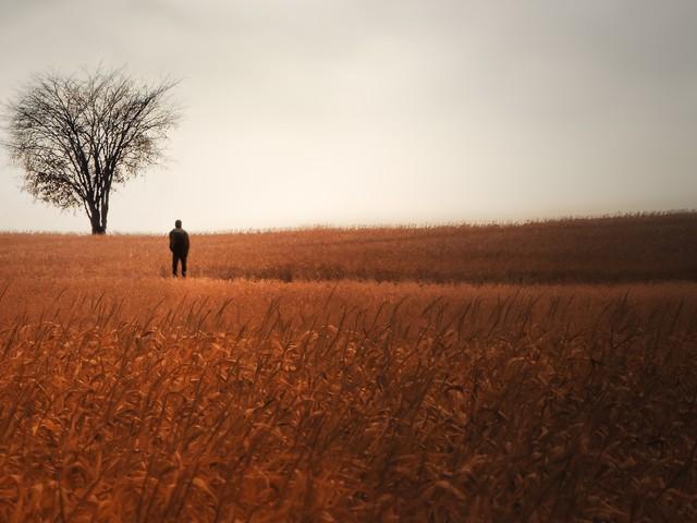 Should I Ever Pursue My Dreams?