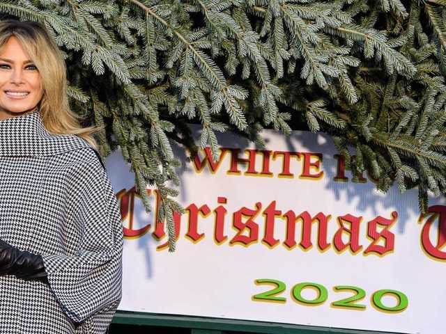 First lady Melania Trump accepts delivery of official White House Christmas tree