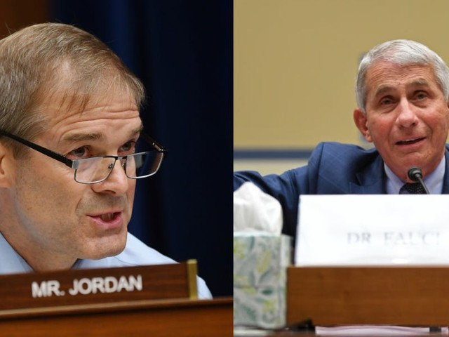 'You're putting words in my mouth': Fauci and Rep. Jim Jordan clash over police brutality protests at House coronavirus hearing