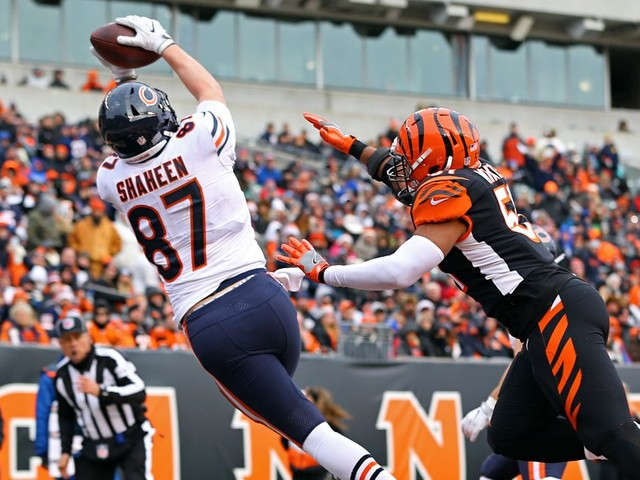 The Bears' small army of tight ends, ranked by things that don't matter
