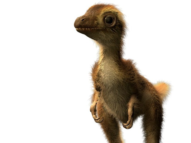 Paleontologists are unraveling the mysteries of young T. rexes. Creatures they thought were 2 species turned out to be kids and adults.
