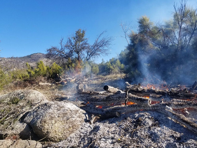 Weather conditions allow pile burning to continue