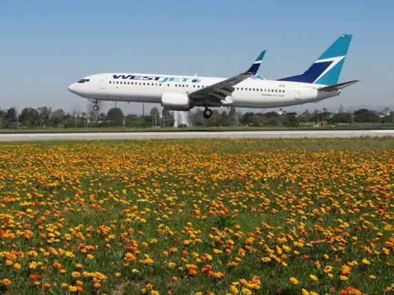 Airports: Will taller buildings hurt SJC? + LAX, La Guardia, Kansas City, Amsterdam
