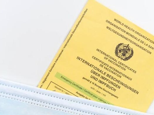 What Would Our Economy Look Like In The Shadow Of Vaccine Passports?