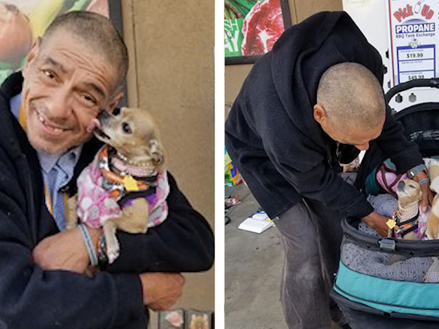 People Raise Money To Buy Homeless Man A Special Stroller For His Dog