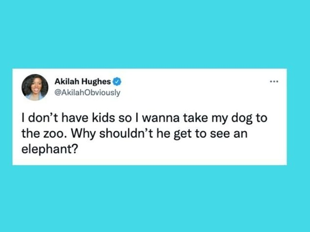 26 Of The Funniest Tweets About Cats And Dogs This Week