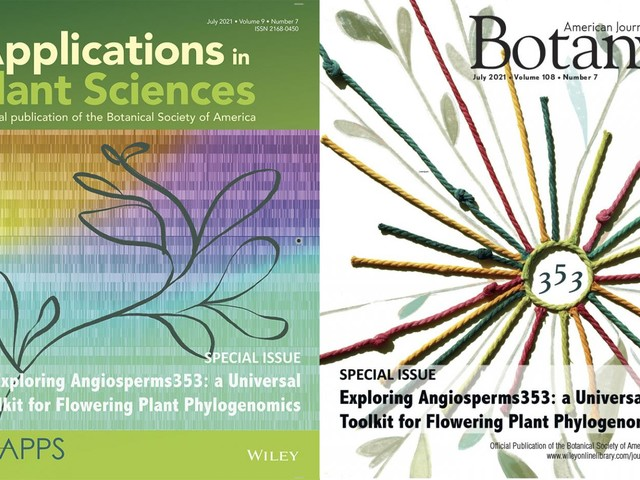 International collaboration of scientists rewrite the rulebook of flowering plant genetics