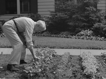 Vintage photos: World War II 'victory gardens'