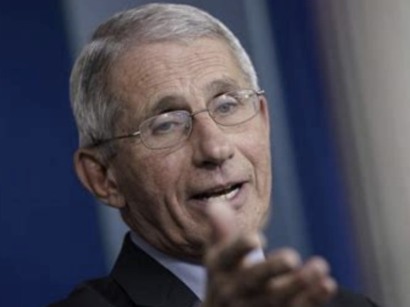 """Dr. Fauci Confirms """"No Reason We Can't Have In-Person Voting"""": Live Updates"""