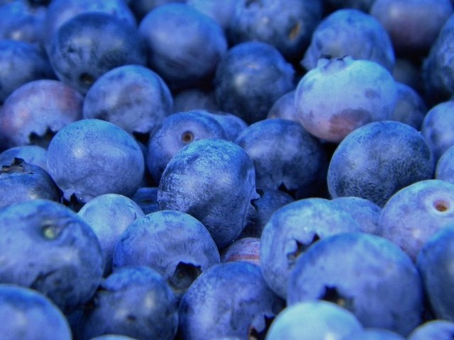 """Large Study Finds Antioxidants, Vitamins & Minerals Are """"Substantially"""" Higher In Organic Food"""