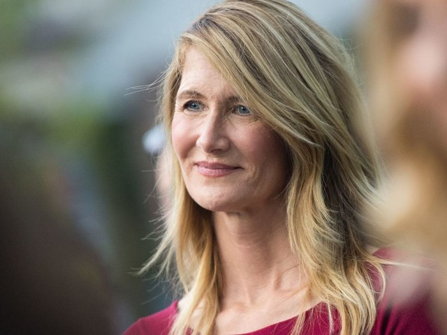 Laura Dern would like everyone to remember that she is in the new 'Star Wars', thank you very much