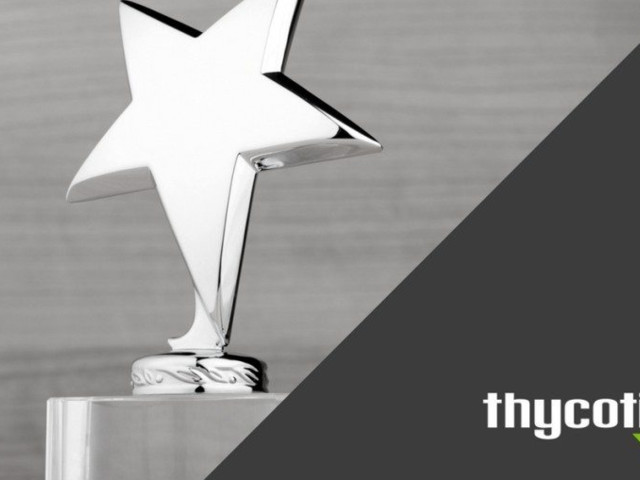Thycotic Honored with Best in Biz Award for Enterprise Security Software