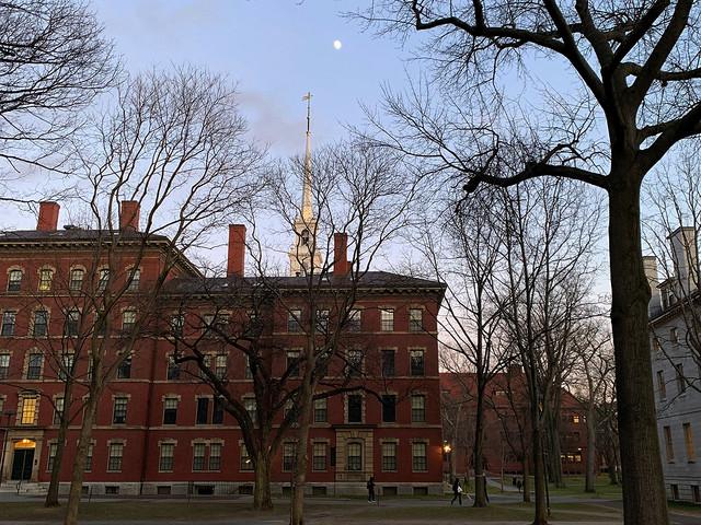 Harvard at Dusk