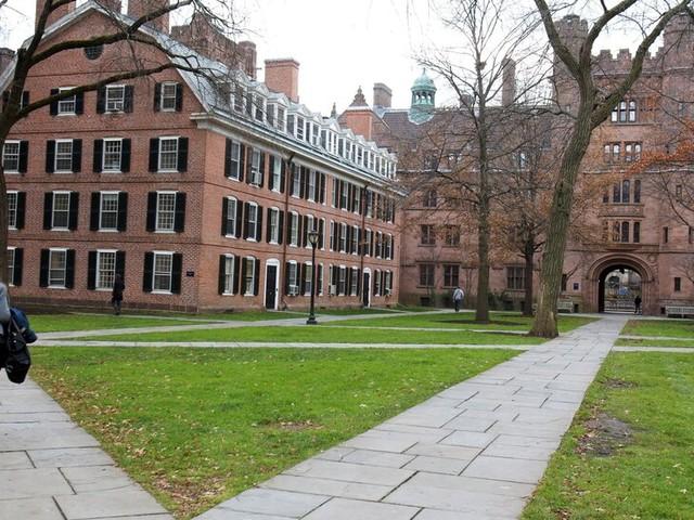 University Endowments Make Billions in Returns in a Bumper Year