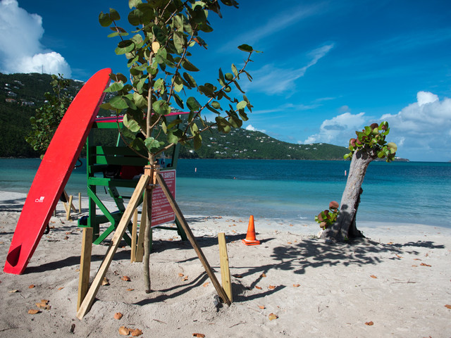 Royal Caribbean Post Round-Up: December 10, 2017