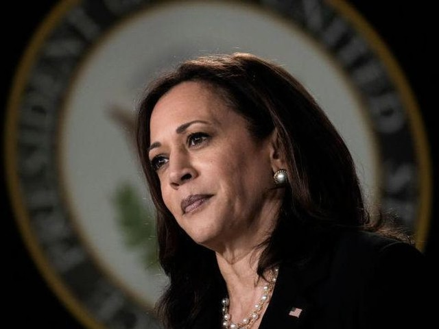 Democrats express serious fear over Kamala Harris' 2024 viability to defeat any Republican candidate: report