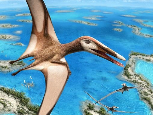 Researchers discover new species of pterosaur that lived on crustaceans around Lebanon