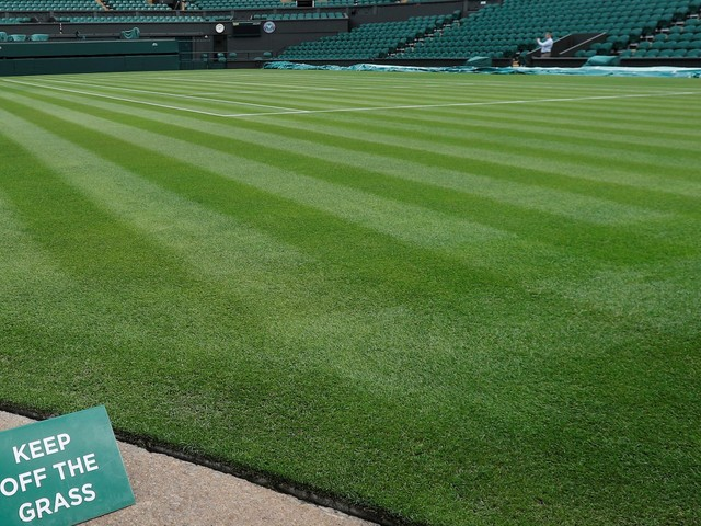 Images of the Wimbledon grass show how much tennis has changed over the last 50 years and the impact on the ball is huge