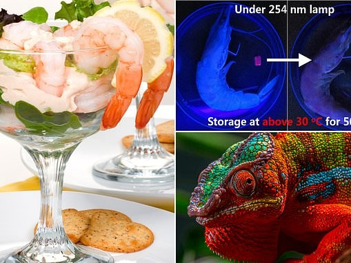 Food: Artificial colour-changing material mimics chameleon skin and can detect seafood freshness